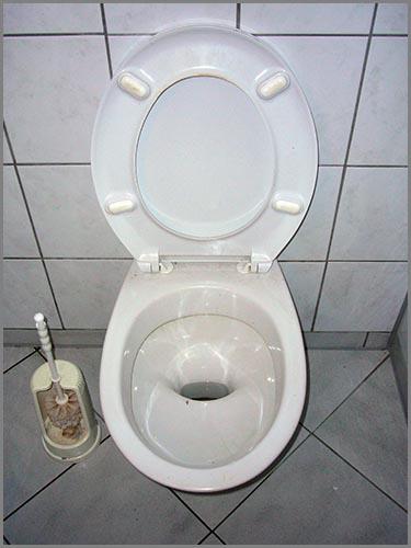 Jeder spült etwa 30 Liter Wasser die Toilette hinunter - jeden Tag